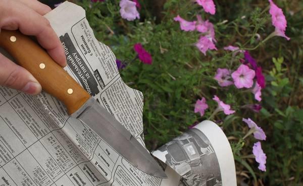 Как использовать мусат для заточки ножей в фото