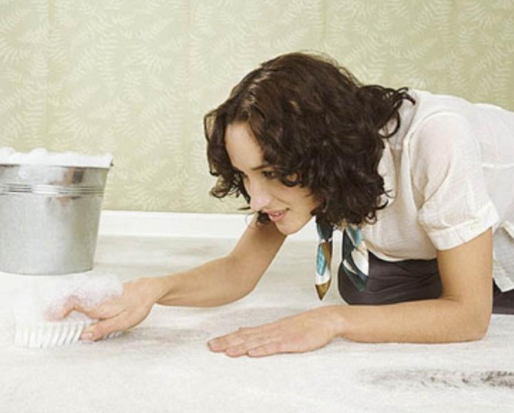 Как избавиться от кошачьего запаха мочи в квартире в домашних условиях в фото