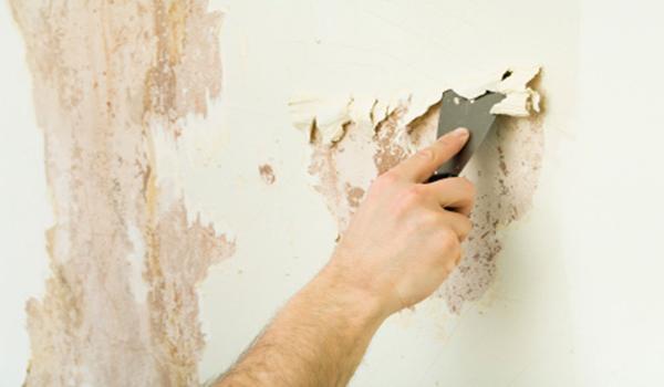 Как легко и просто смыть побелку со стен в фото