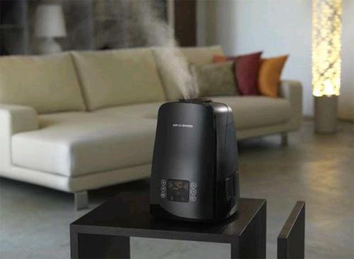 Как увлажнить сухой воздух в квартире? в фото