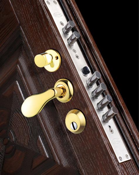 Как выбрать дверь входную металлическую в квартиру и дополнительные элементы к ней (видео) в фото