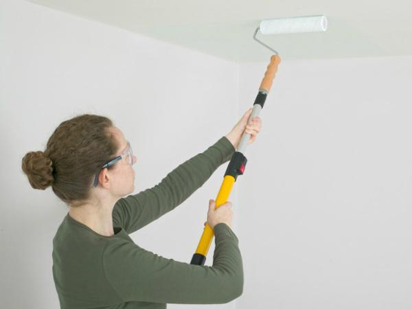 Какой валик для покраски потолка лучше использовать? в фото