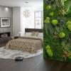 Стабилизированный мох для декора спальни