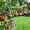 Сад на участке