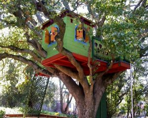 painted bird tree house