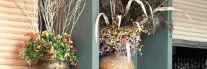 Идея для декора с сухими цветами в фото