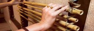 Виды бамбуковых штор на окна в фото