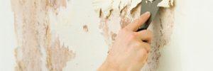 Подробно о смесях для выравнивания стен в фото