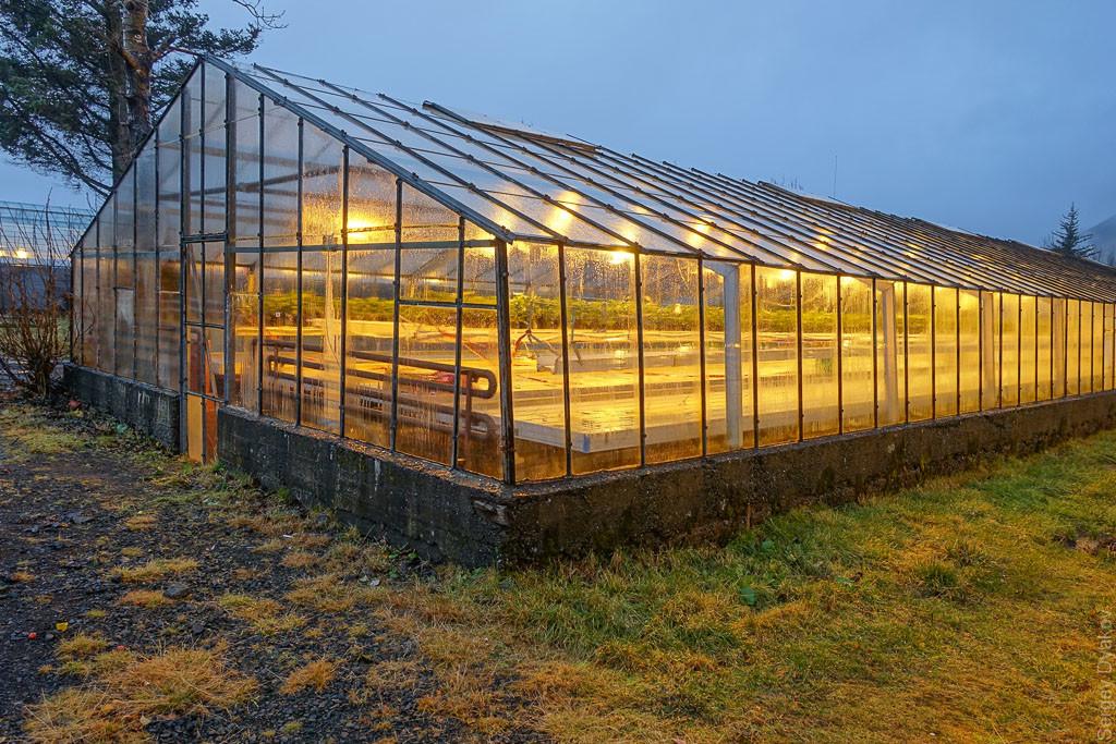Теплица для круглогодичного выращивания плодовой и овощной продукции