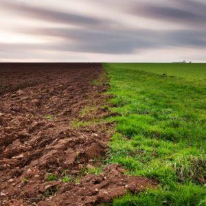 Агропортал и агропромышленный бизнес