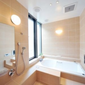 Светильник в ванную — особенности выбора