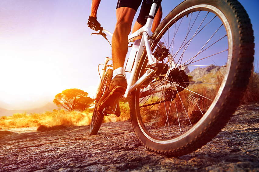 Mountain-Bike-Beginners-Guide